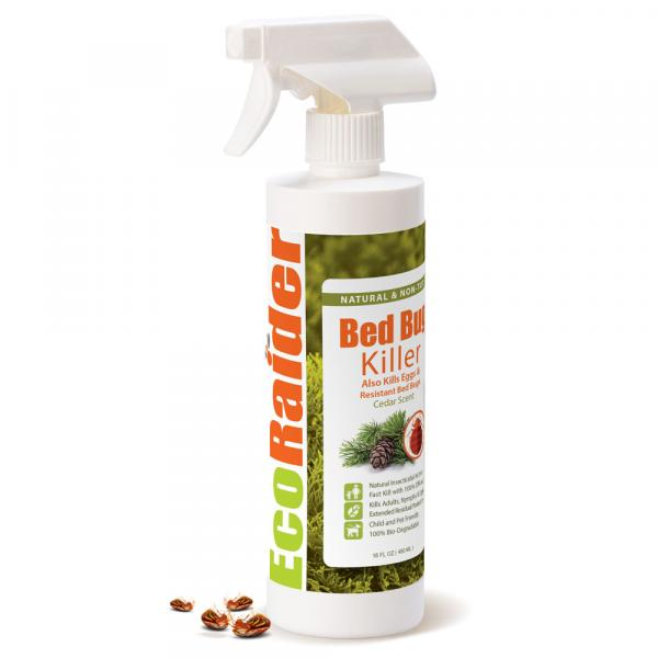 Ecoraider Bed Bugs Killer only 149 AED with free Shipping